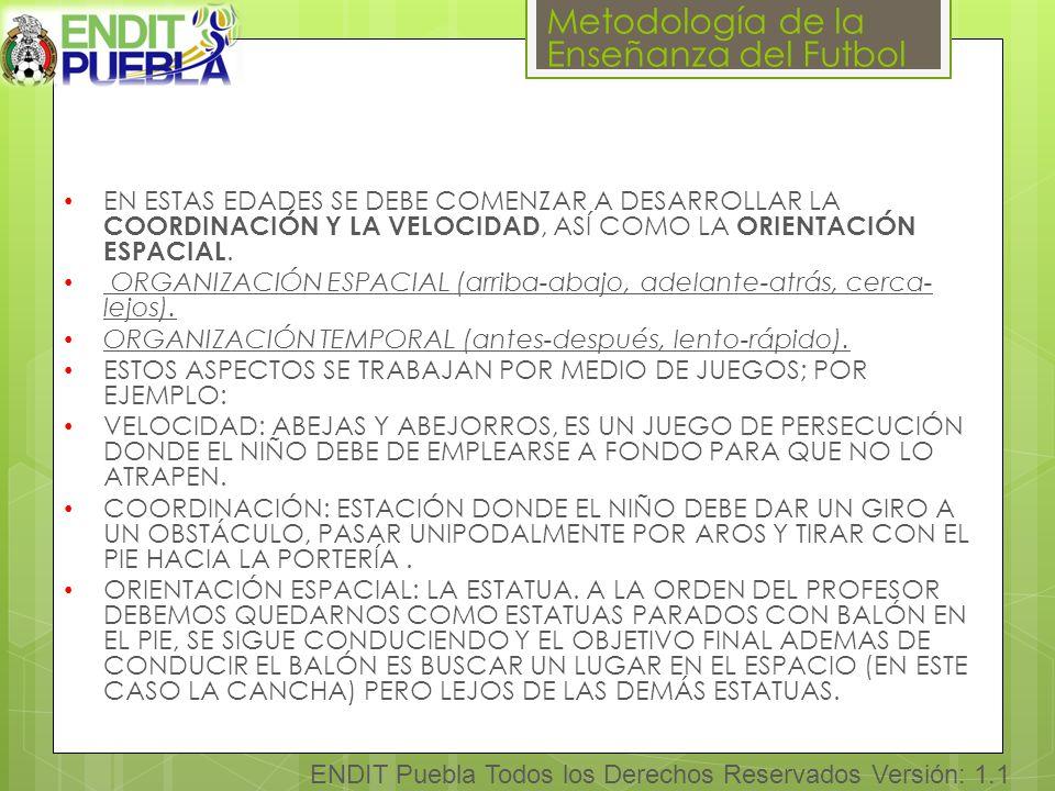 Metodología de la Enseñanza del Futbol ENDIT Puebla Todos los Derechos Reservados Versión: 1.1 EN ESTAS EDADES SE DEBE COMENZAR A DESARROLLAR LA COORDINACIÓN Y LA VELOCIDAD, ASÍ COMO LA ORIENTACIÓN ESPACIAL.