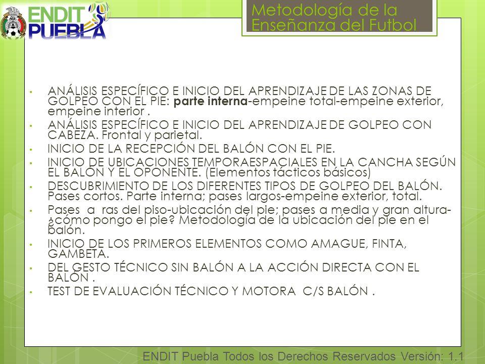 Metodología de la Enseñanza del Futbol ENDIT Puebla Todos los Derechos Reservados Versión: 1.1 ANÁLISIS ESPECÍFICO E INICIO DEL APRENDIZAJE DE LAS ZONAS DE GOLPEO CON EL PIE: parte interna -empeine total-empeine exterior, empeine interior.