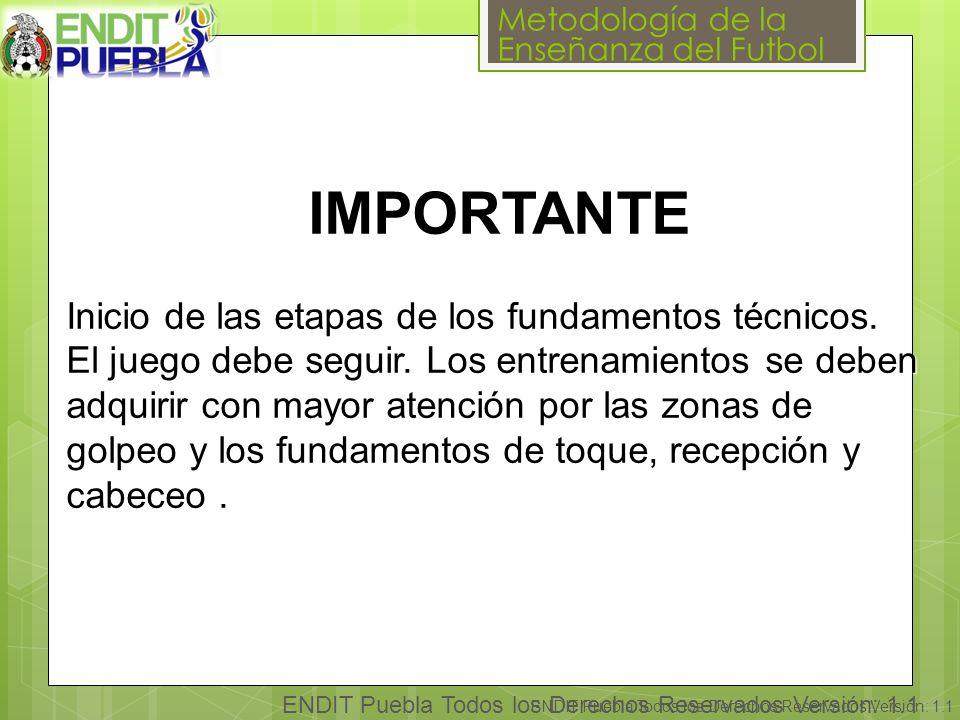 Metodología de la Enseñanza del Futbol ENDIT Puebla Todos los Derechos Reservados Versión: 1.1 IMPORTANTE Inicio de las etapas de los fundamentos técnicos.