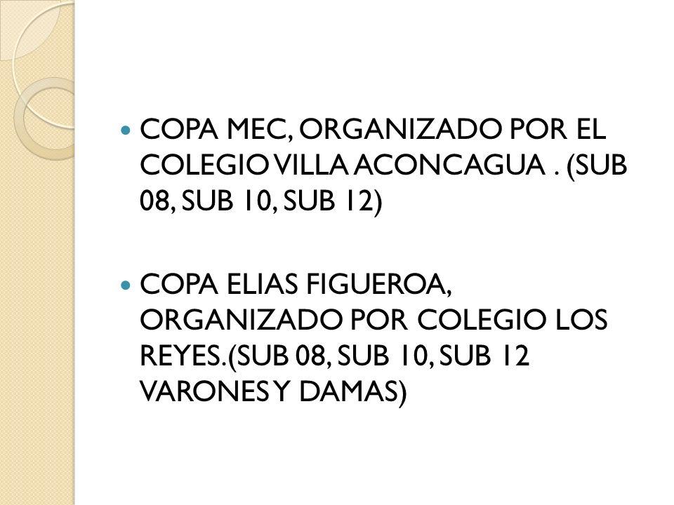 COPA MEC, ORGANIZADO POR EL COLEGIO VILLA ACONCAGUA. (SUB 08, SUB 10, SUB 12) COPA ELIAS FIGUEROA, ORGANIZADO POR COLEGIO LOS REYES.(SUB 08, SUB 10, S