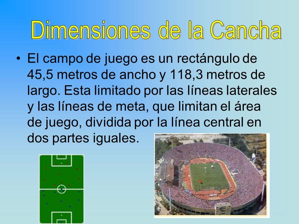 El campo de juego es un rectángulo de 45,5 metros de ancho y 118,3 metros de largo. Esta limitado por las líneas laterales y las líneas de meta, que l