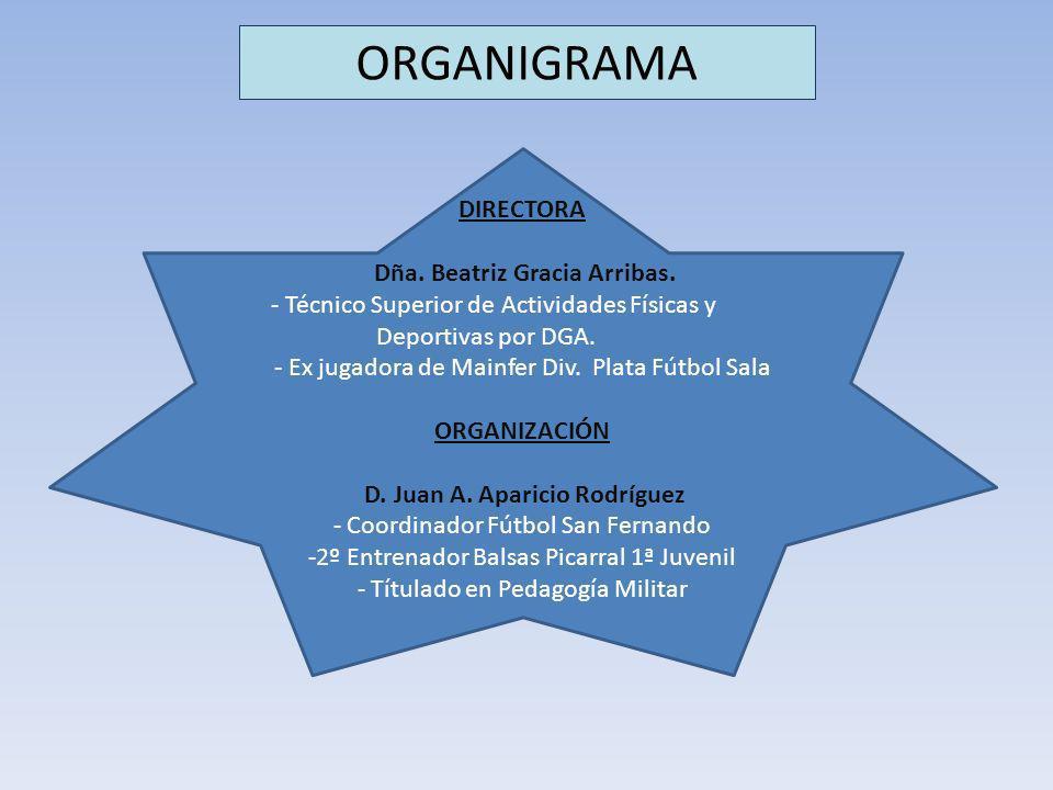 ORGANIGRAMA DIRECTORA Dña. Beatriz Gracia Arribas. - Técnico Superior de Actividades Físicas y Deportivas por DGA. - Ex jugadora de Mainfer Div. Plata