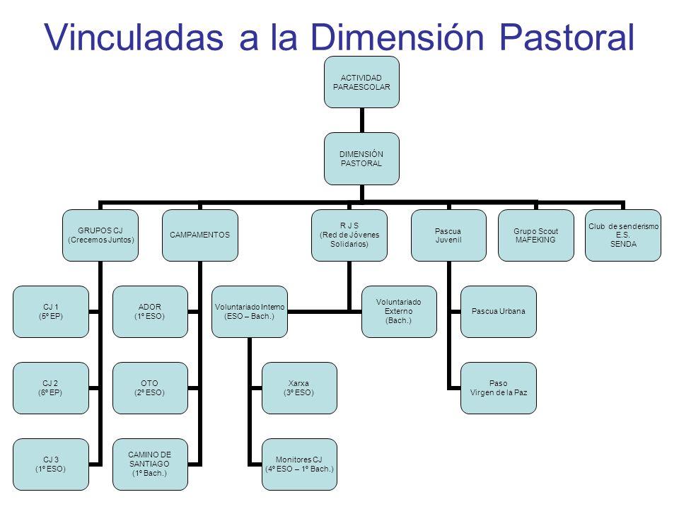 Vinculadas a la Dimensión Pastoral ACTIVIDAD PARAESCOLAR DIMENSIÓN PASTORAL GRUPOS CJ (Crecemos Juntos) CJ 1 (5º EP) CJ 2 (6º EP) CJ 3 (1º ESO) CAMPAMENTOS ADOR (1º ESO) OTO (2º ESO) CAMINO DE SANTIAGO (1º Bach.) R J S (Red de Jóvenes Solidarios) Voluntariado Interno (ESO – Bach.) Xarxa (3º ESO) Monitores CJ (4º ESO – 1º Bach.) Voluntariado Externo (Bach.) Pascua Juvenil Pascua Urbana Paso Virgen de la Paz Grupo Scout MAFEKING Club de senderismo E.S.