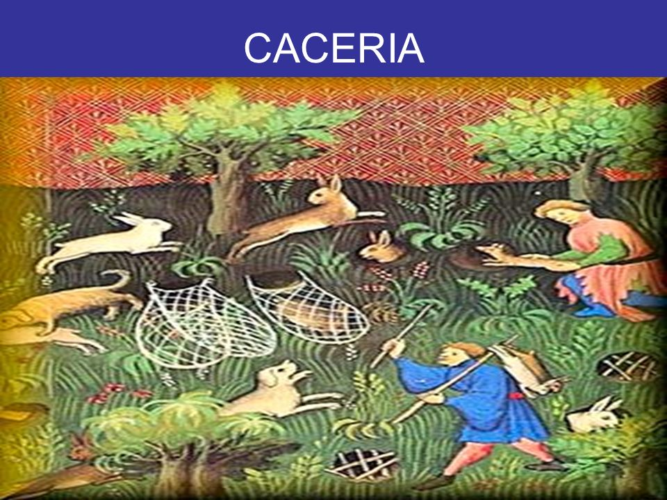 CACERIA