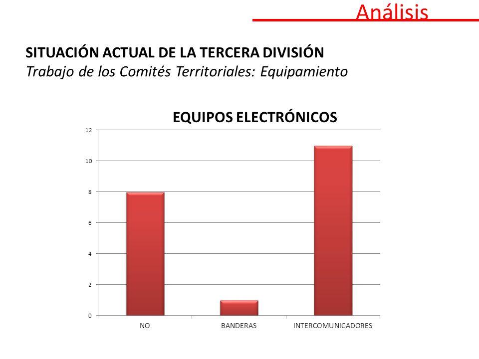 Análisis SITUACIÓN ACTUAL DE LA TERCERA DIVISIÓN Trabajo de los Comités Territoriales: Equipamiento