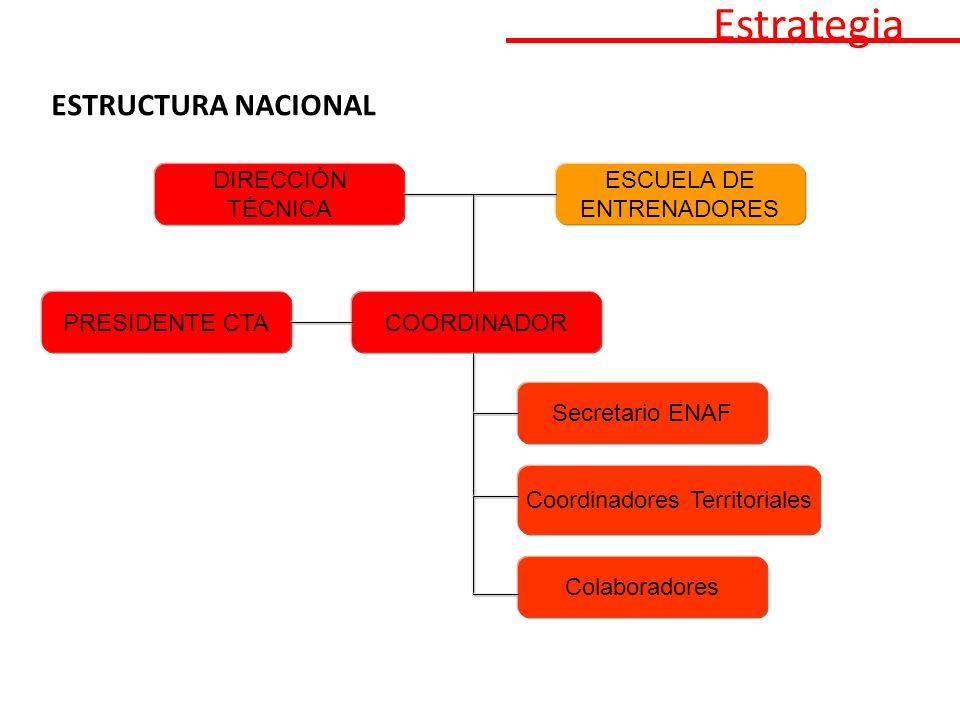 ESTRUCTURA NACIONAL Estrategia PRESIDENTE CTACOORDINADOR Secretario ENAF Coordinadores Territoriales Colaboradores DIRECCIÓN TÉCNICA ESCUELA DE ENTRENADORES