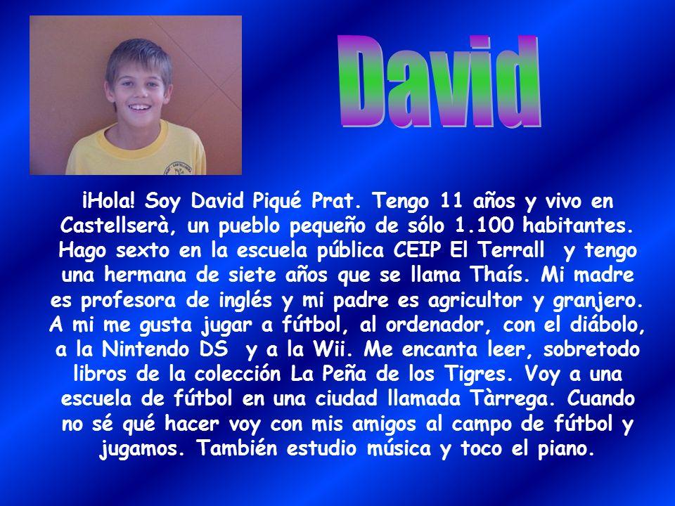 ¡Hola! Soy David Piqué Prat. Tengo 11 años y vivo en Castellserà, un pueblo pequeño de sólo 1.100 habitantes. Hago sexto en la escuela pública CEIP El