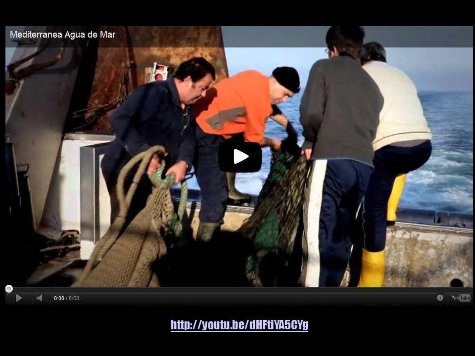 http://www.tv3.cat/videos/4120813/Aigua-de-mar-embotellada