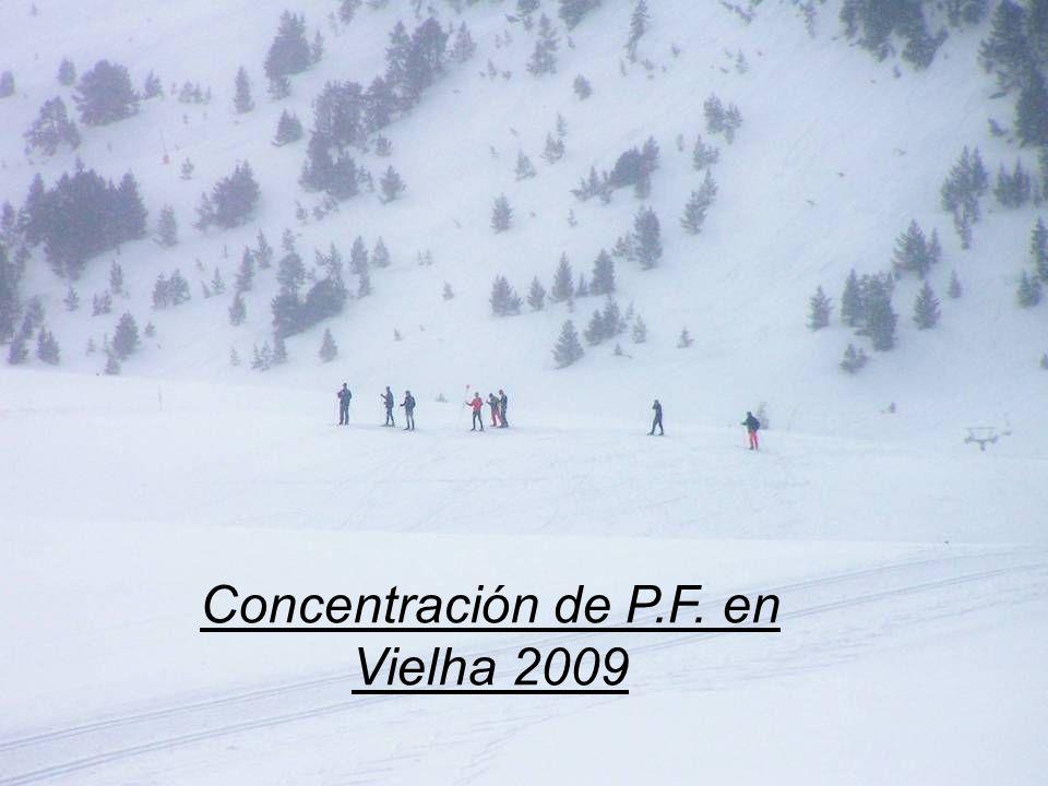 Concentración de P.F. en Vielha 2009