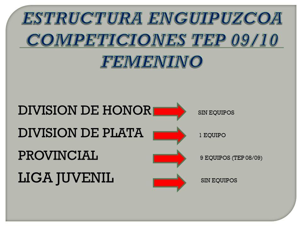 DIVISION DE HONOR SIN EQUIPOS DIVISION DE PLATA 1 EQUIPO PROVINCIAL 9 EQUIPOS (TEP 08/09) LIGA JUVENIL SIN EQUIPOS