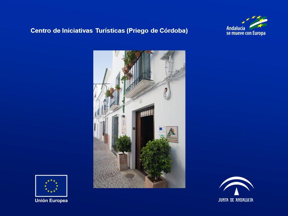 Centro de Iniciativas Turísticas (Priego de Córdoba)