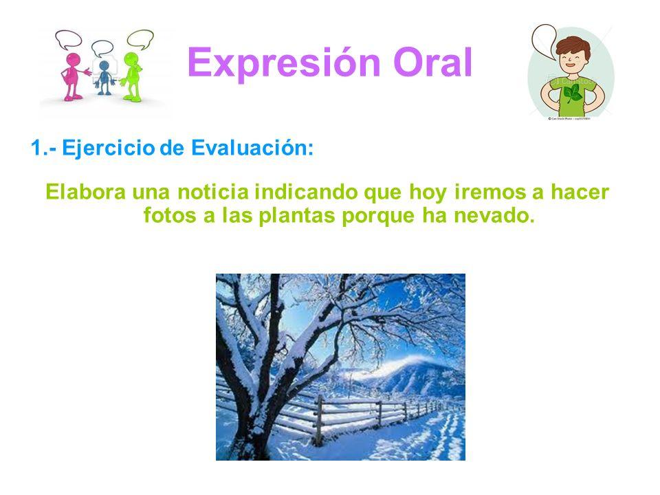 Expresión Oral 1.- Ejercicio de Evaluación: Elabora una noticia indicando que hoy iremos a hacer fotos a las plantas porque ha nevado.