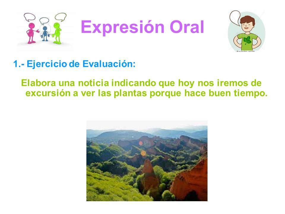 Expresión Oral 1.- Ejercicio de Evaluación: Elabora una noticia indicando que hoy nos iremos de excursión a ver las plantas porque hace buen tiempo.