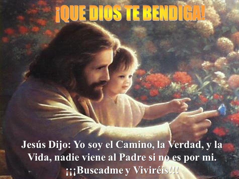 Jesús Dijo: Yo soy el Camino, la Verdad, y la Vida, nadie viene al Padre si no es por mi. ¡¡¡Buscadme y Viviréis!!!