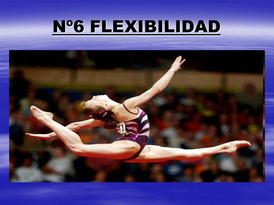 Nº6 FLEXIBILIDAD