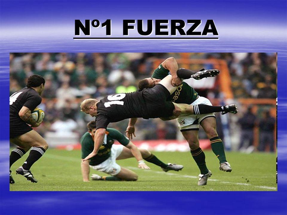 Nº1 FUERZA