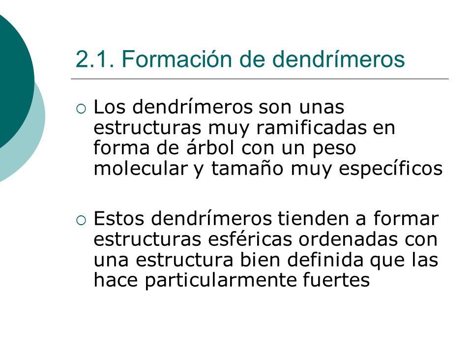 2.1. Formación de dendrímeros Los dendrímeros son unas estructuras muy ramificadas en forma de árbol con un peso molecular y tamaño muy específicos Es