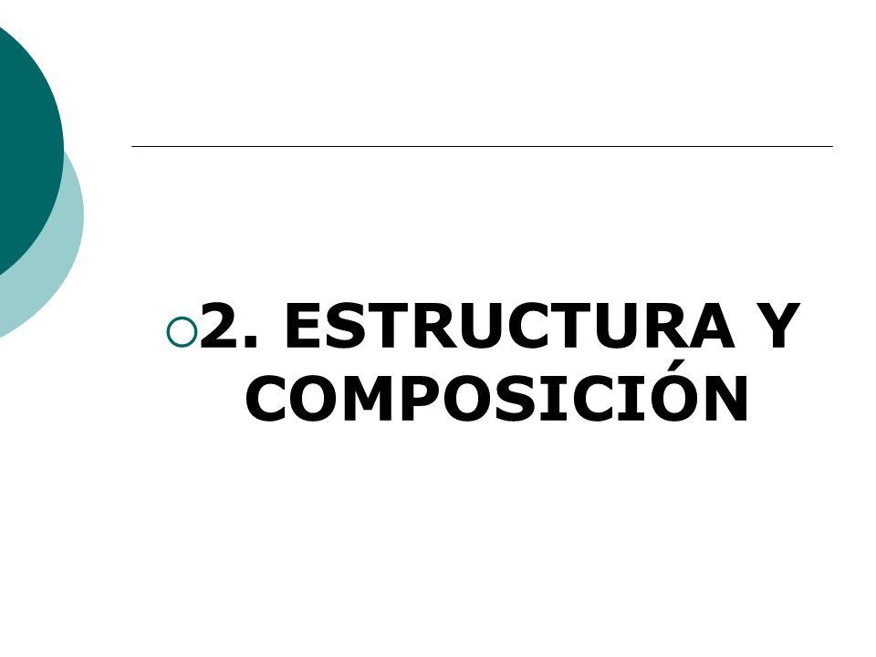 2. ESTRUCTURA Y COMPOSICIÓN