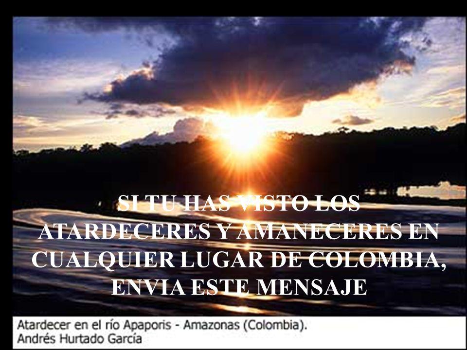 Y POR ESTA RAZON ES QUE DIGO: !YO SOY COLOMBIANO A MUCHO HONOR Y POR COLOMBIA ME LA JUEGO TODA!