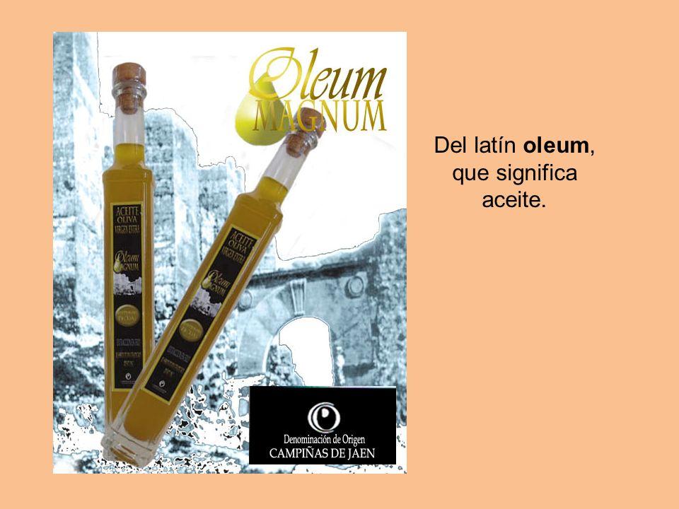 Del latín oleum, que significa aceite.