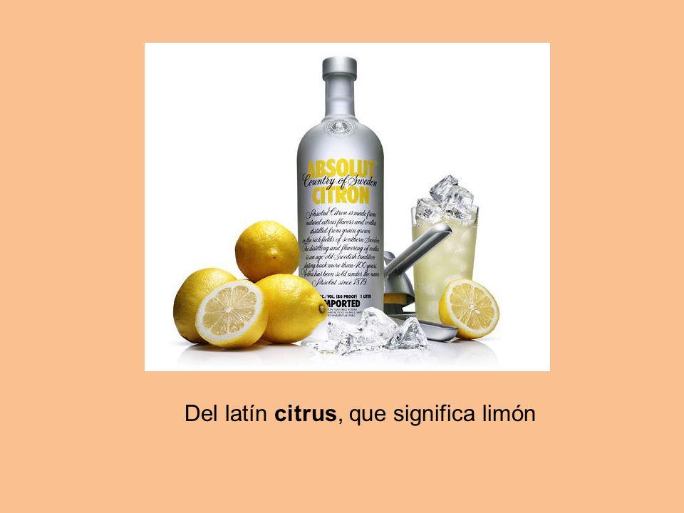 Del latín citrus, que significa limón