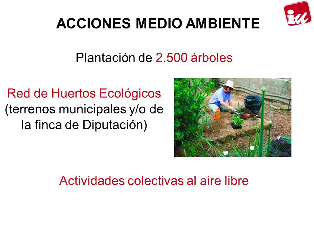 ACCIONES MEDIO AMBIENTE Plantación de 2.500 árboles Red de Huertos Ecológicos (terrenos municipales y/o de la finca de Diputación) Actividades colectivas al aire libre