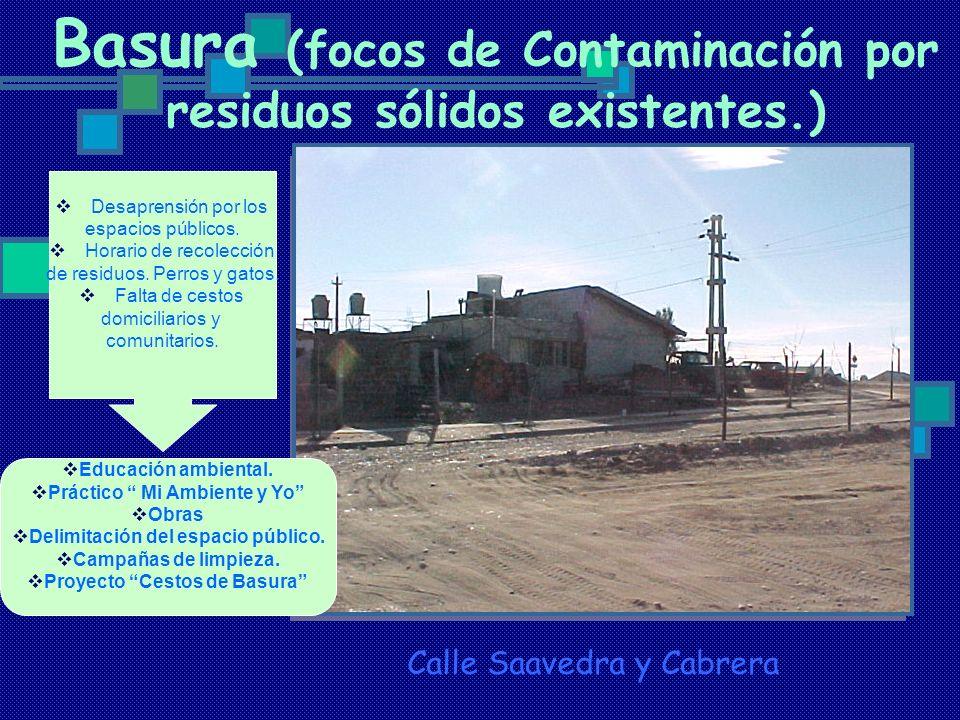Basura (focos de Contaminación por residuos sólidos existentes.) Calle Saavedra y Cabrera Desaprensión por los espacios públicos. Horario de recolecci