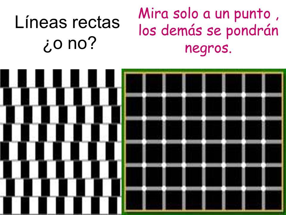 Líneas rectas ¿o no? Mira solo a un punto, los demás se pondrán negros.