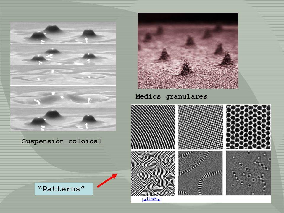 Medios granulares Suspensión coloidal Patterns