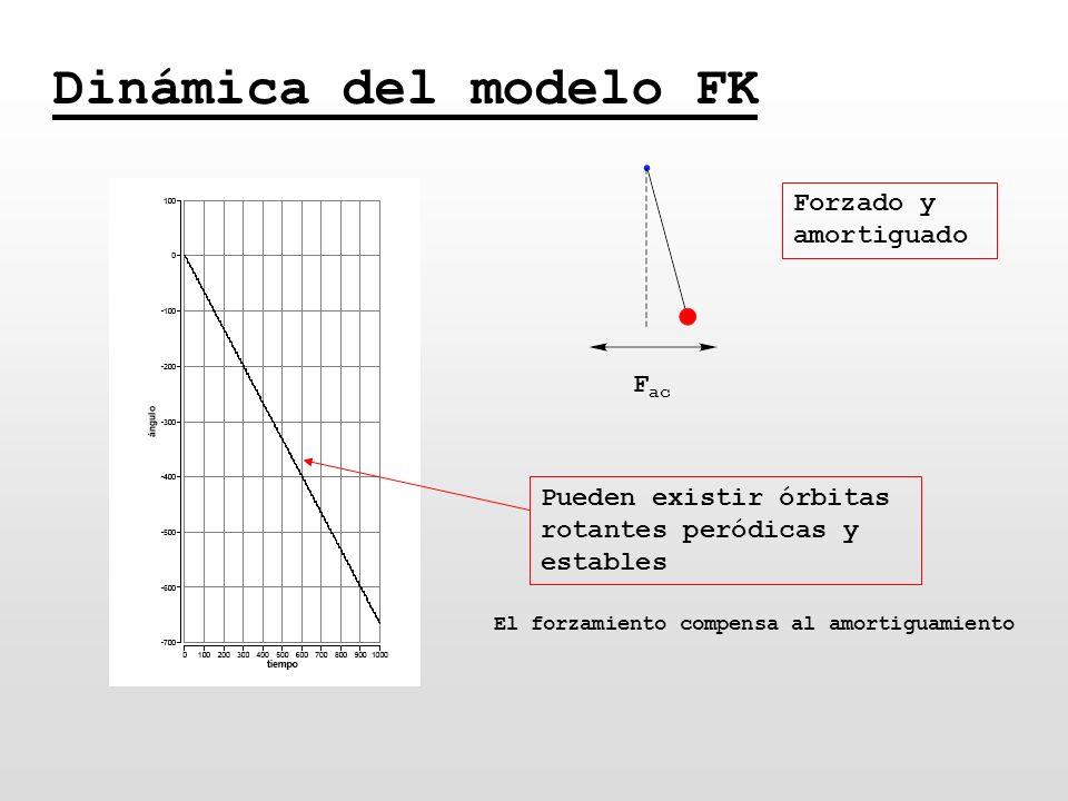 Dinámica del modelo FK F ac Forzado y amortiguado Pueden existir órbitas rotantes peródicas y estables El forzamiento compensa al amortiguamiento