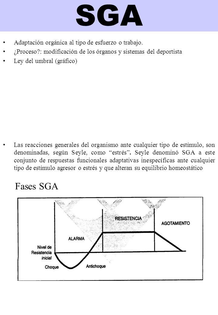 SGA Adaptación orgánica al tipo de esfuerzo o trabajo.