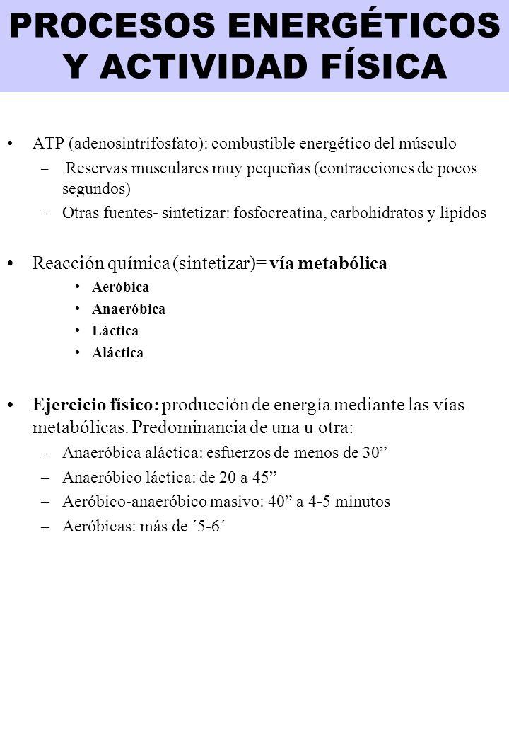 PROCESOS ENERGÉTICOS Y ACTIVIDAD FÍSICA ATP (adenosintrifosfato): combustible energético del músculo – Reservas musculares muy pequeñas (contracciones de pocos segundos) –Otras fuentes- sintetizar: fosfocreatina, carbohidratos y lípidos Reacción química (sintetizar)= vía metabólica Aeróbica Anaeróbica Láctica Aláctica Ejercicio físico: producción de energía mediante las vías metabólicas.