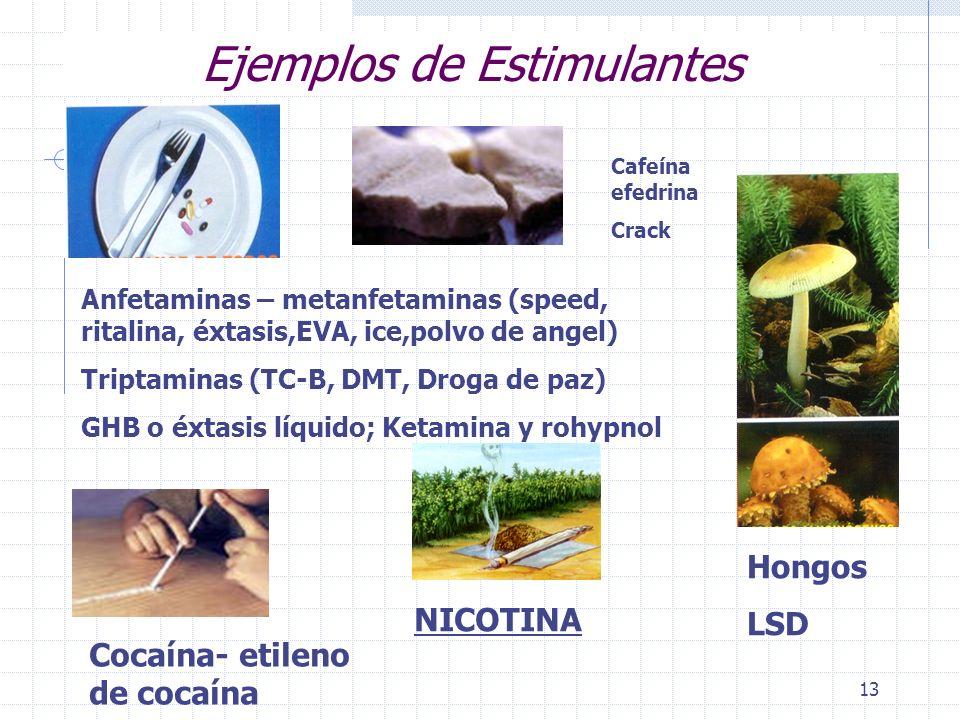 13 Ejemplos de Estimulantes Anfetaminas – metanfetaminas (speed, ritalina, éxtasis,EVA, ice,polvo de angel) Triptaminas (TC-B, DMT, Droga de paz) GHB o éxtasis líquido; Ketamina y rohypnol Cocaína- etileno de cocaína NICOTINA Cafeína efedrina Crack Hongos LSD