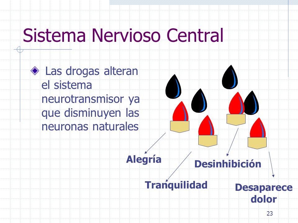23 Sistema Nervioso Central Las drogas alteran el sistema neurotransmisor ya que disminuyen las neuronas naturales Alegría Tranquilidad Desinhibición Desaparece dolor