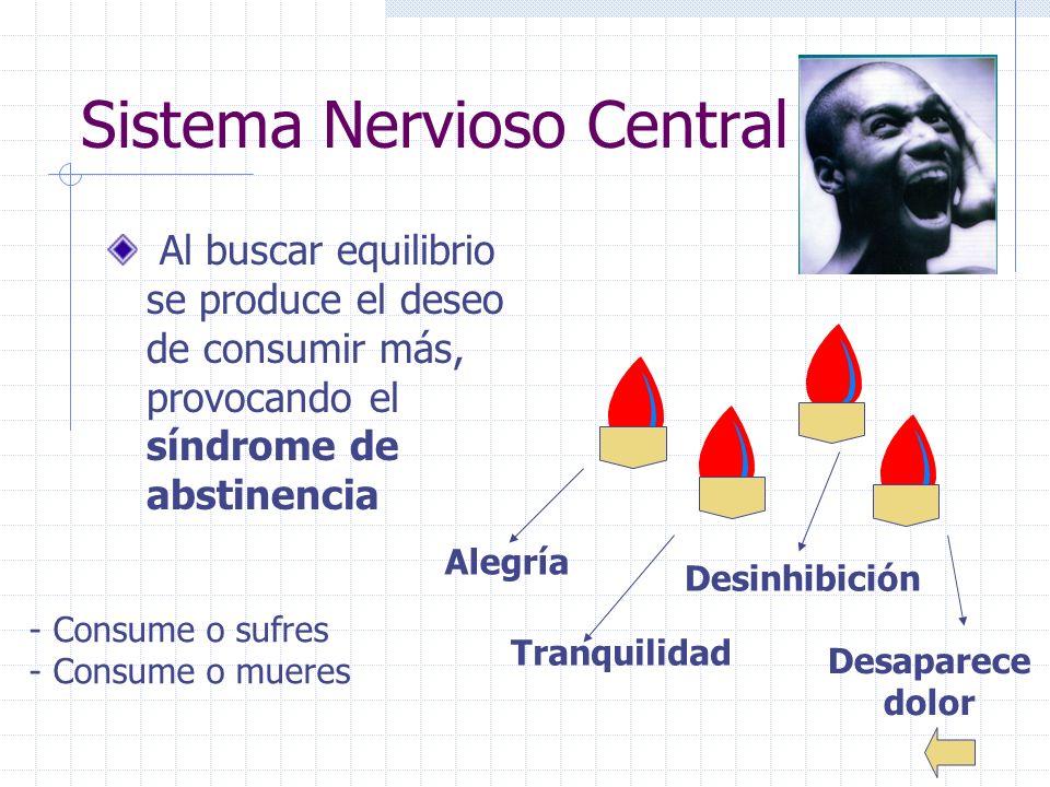 25 Sistema Nervioso Central Al buscar equilibrio se produce el deseo de consumir más, provocando el síndrome de abstinencia Alegría Tranquilidad Desinhibición Desaparece dolor - Consume o sufres - Consume o mueres