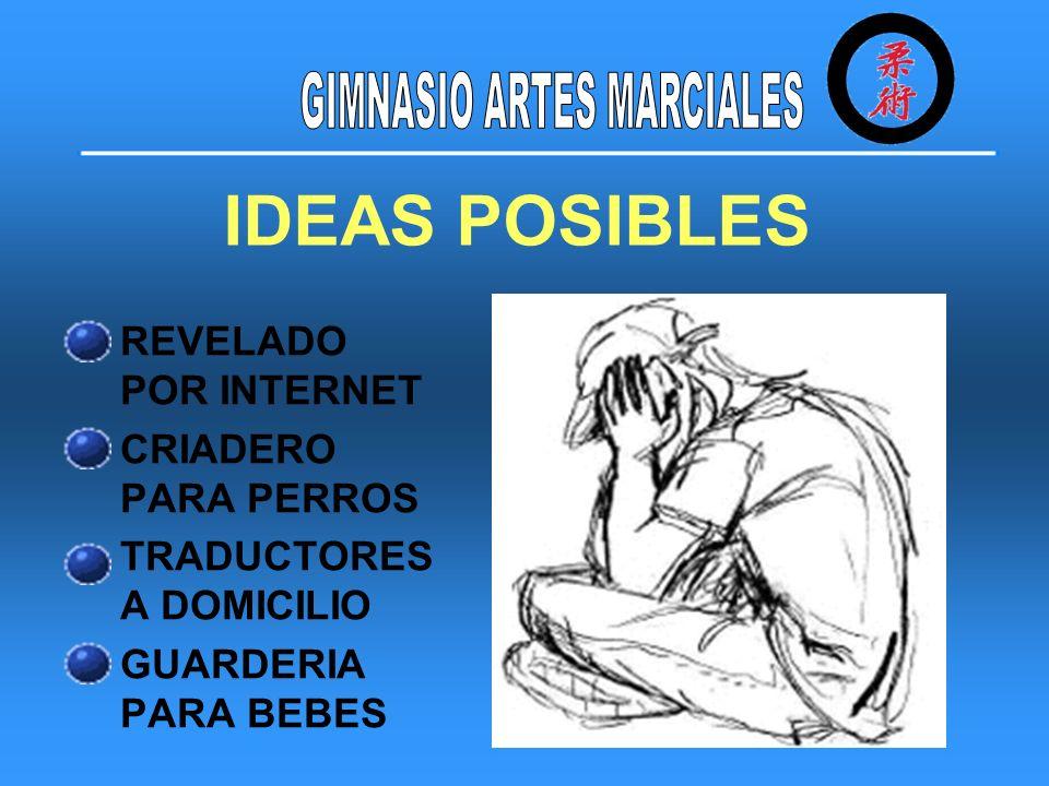 IDEA ELEGIDA GIMNASIO DE ARTES MARCIALES.