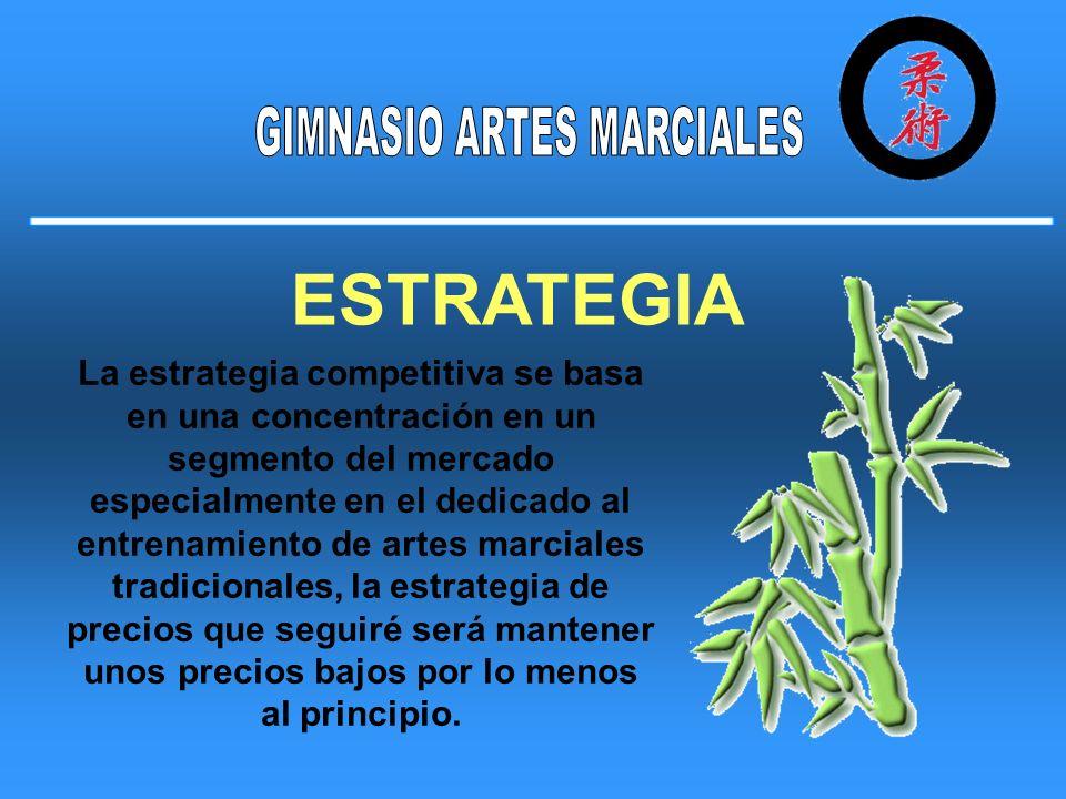La estrategia competitiva se basa en una concentración en un segmento del mercado especialmente en el dedicado al entrenamiento de artes marciales tra