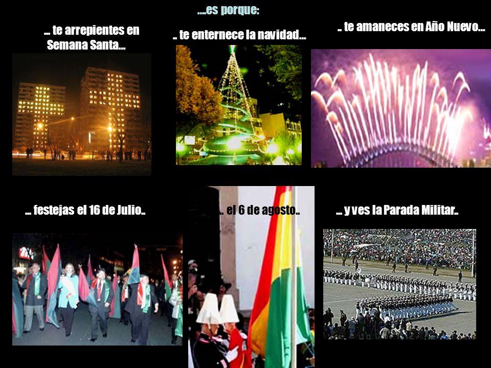 ... eres del Bolívar.. … no hay más…. ….es porque: … comes salchichas en San Juan, visitas el cementerio en Todos Santos…,... eres del Tigre,…... en l