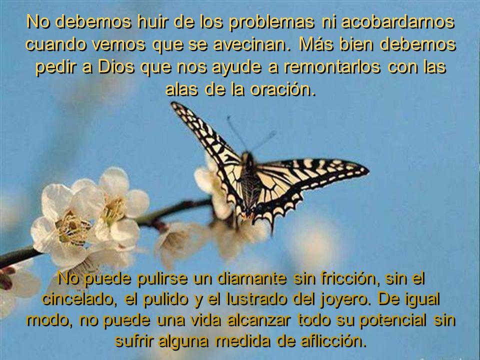No debemos huir de los problemas ni acobardarnos cuando vemos que se avecinan. Más bien debemos pedir a Dios que nos ayude a remontarlos con las alas