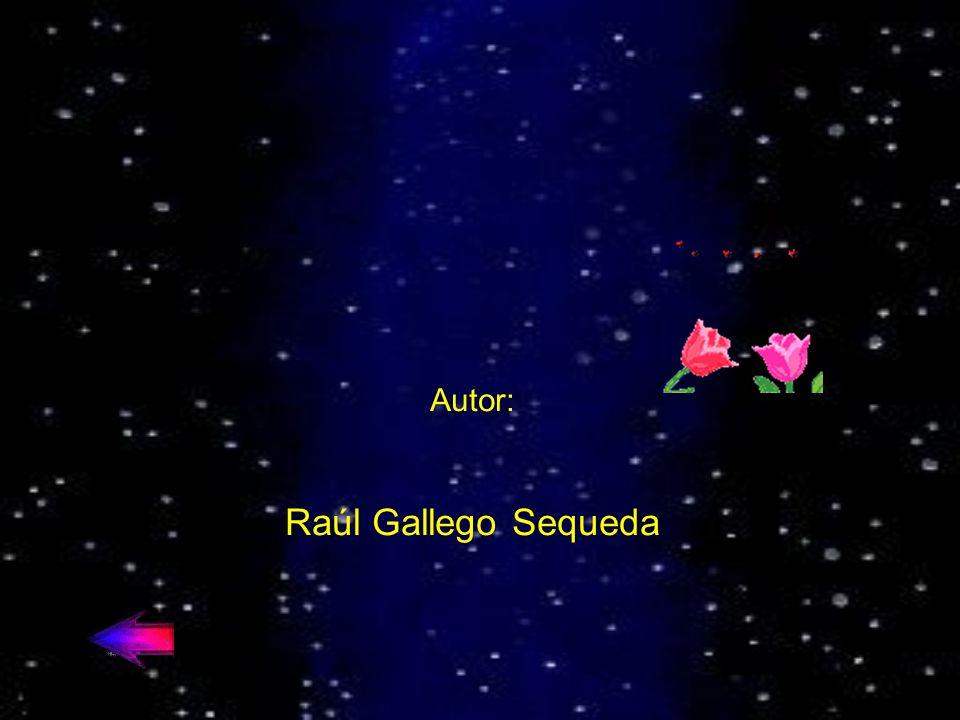 Autor: Raúl Gallego Sequeda