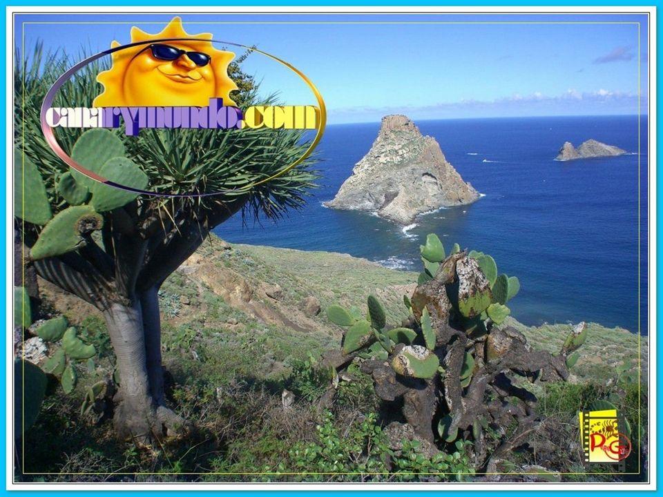 Santa Cruz de Santiago de Tenerife.ENTREGA II Música: Polca de Panchito.