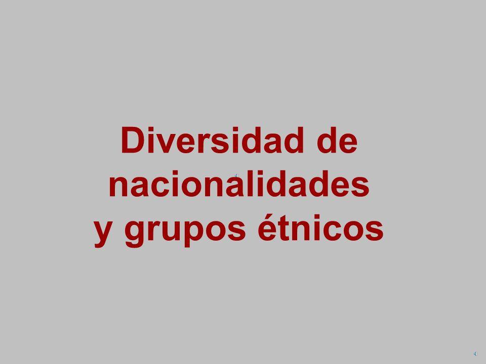 Diversidad de nacionalidades y grupos étnicos