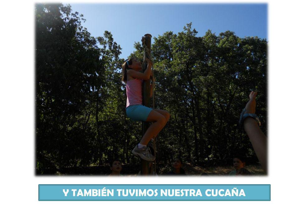 Y TAMBIÉN TUVIMOS NUESTRA CUCAÑA