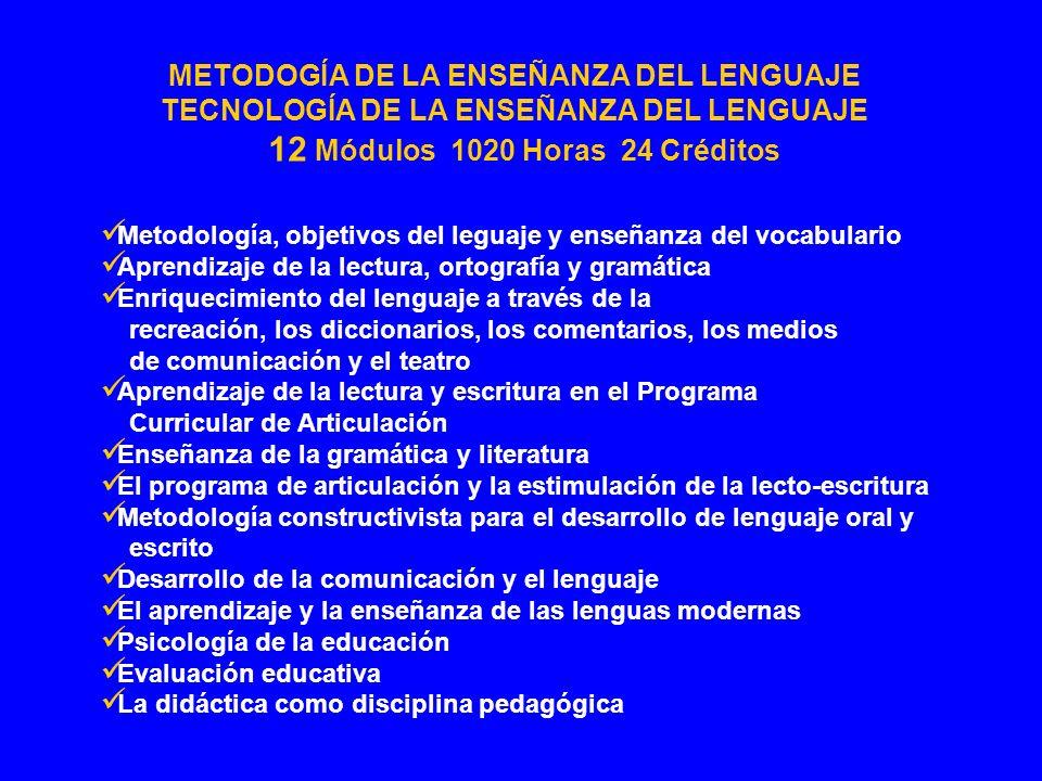 Metodología, objetivos del leguaje y enseñanza del vocabulario Aprendizaje de la lectura, ortografía y gramática Enriquecimiento del lenguaje a través
