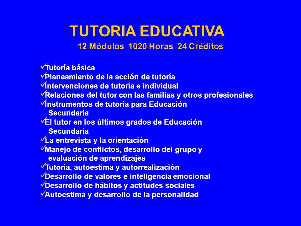 Tutoría básica Planeamiento de la acción de tutoría Intervenciones de tutoría e individual Relaciones del tutor con las familias y otros profesionales