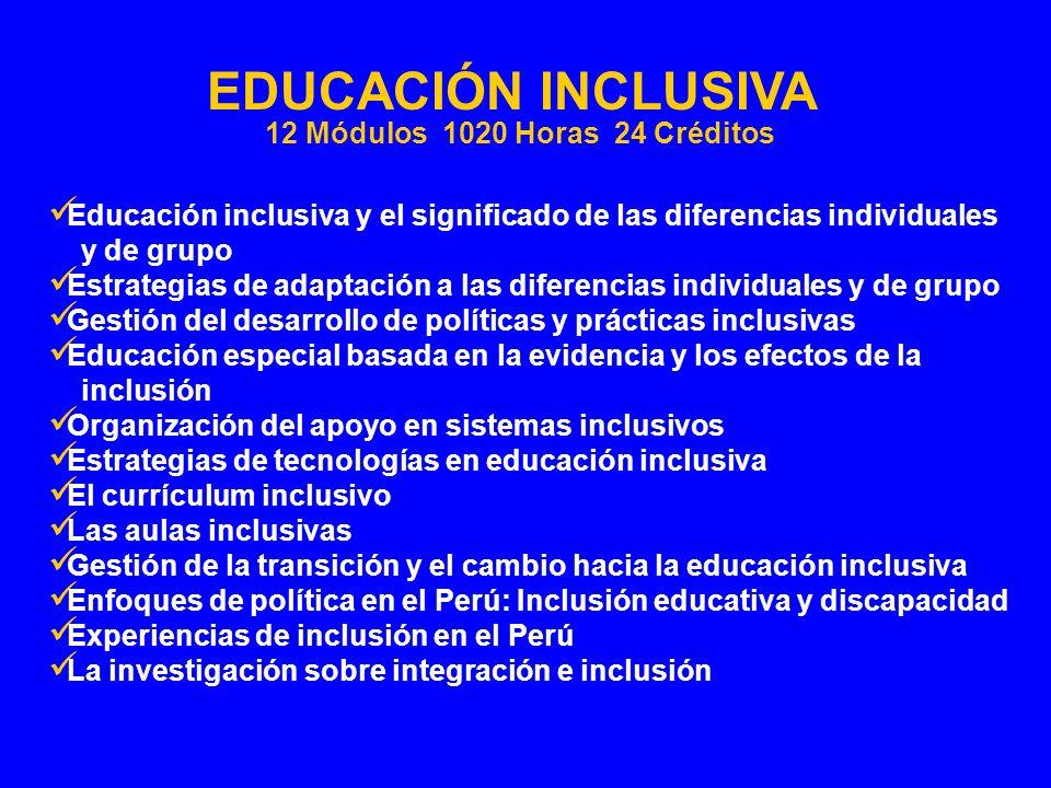 Educación inclusiva y el significado de las diferencias individuales y de grupo Estrategias de adaptación a las diferencias individuales y de grupo Ge
