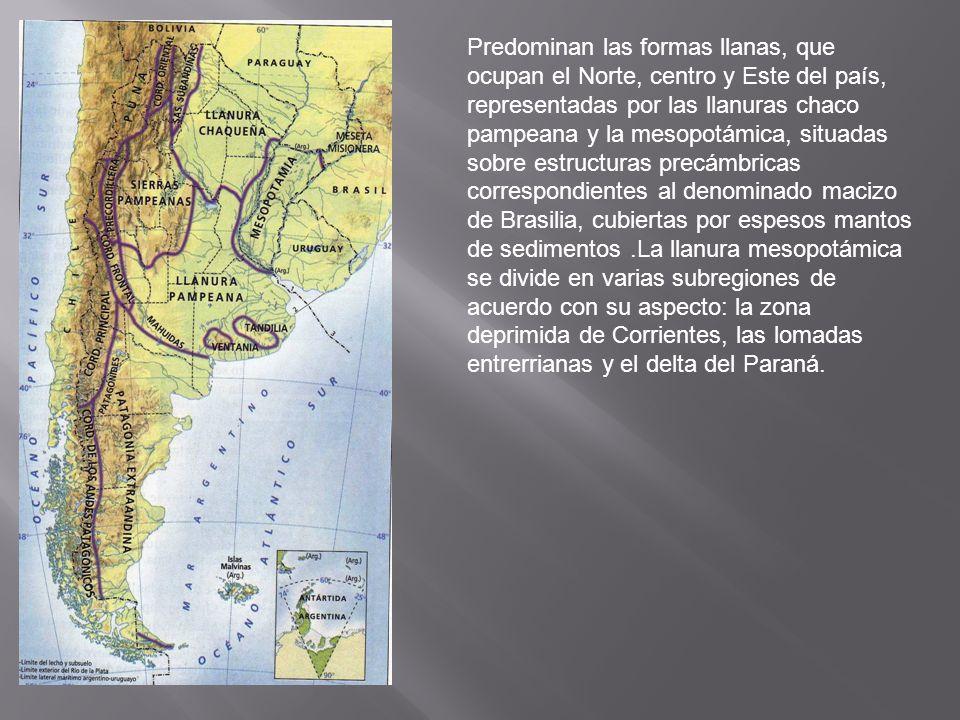 Predominan las formas llanas, que ocupan el Norte, centro y Este del país, representadas por las llanuras chaco pampeana y la mesopotámica, situadas s