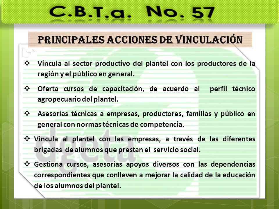 PRINCIPALES ACCIONES DE VINCULACIÓN Vincula al sector productivo del plantel con los productores de la región y el público en general. Oferta cursos d