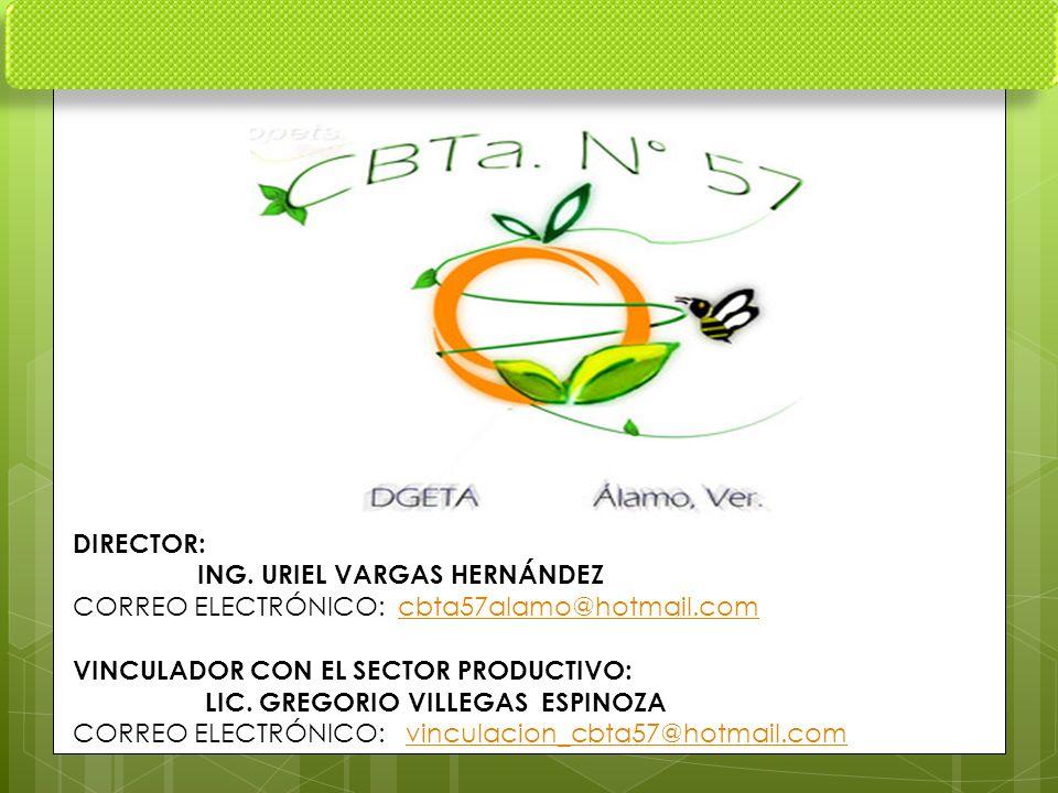 DIRECTOR: ING. URIEL VARGAS HERNÁNDEZ CORREO ELECTRÓNICO: cbta57alamo@hotmail.comcbta57alamo@hotmail.com VINCULADOR CON EL SECTOR PRODUCTIVO: LIC. GRE