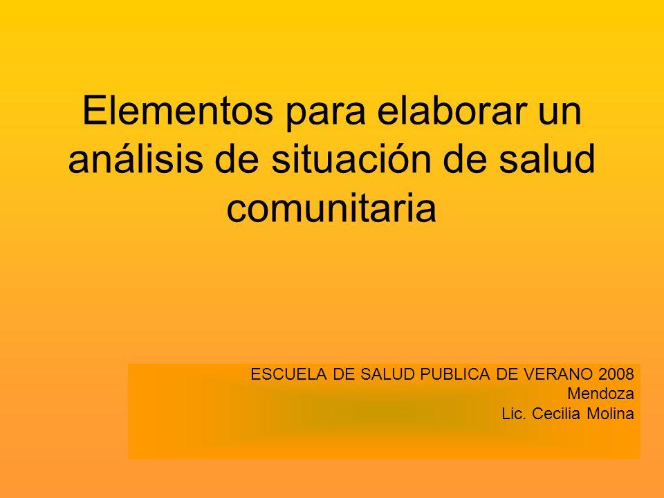 Elementos para elaborar un análisis de situación de salud comunitaria ESCUELA DE SALUD PUBLICA DE VERANO 2008 Mendoza Lic. Cecilia Molina
